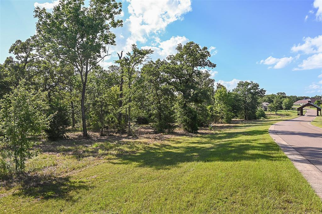 Lot 14 King Oaks Drive, Iola, TX 77861