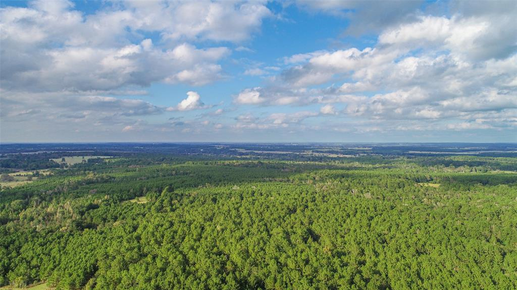 Country BEAUTY on this 47 acre wooded tract with NO RESTRICTIONS! Perfect for a HUNTING getaway or build your dream home. There is a 3000 sf metal building with living quarters and a large shop, or you can rework it to be what you need and want! Well and electric (2 meters) is already there along with central AC and Heat! This land is mostly wooded with a small pond. Trails are cut and the metal building is nestled in the heart of the woods and trees! You'll love the privacy, peace, quiet, and beauty this property offers you. Close to Houston and Dallas for a quick weekend getaway from the hustle and bustle. Come get it!