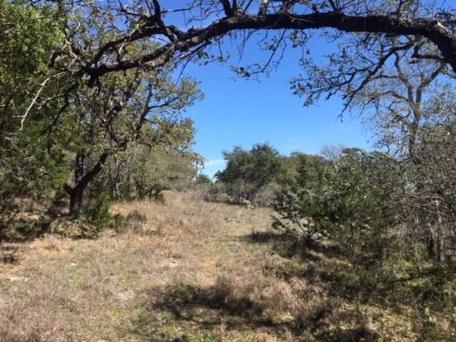 272 Westshire Lane, New Braunfels, TX 78132