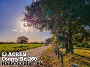 13-ac County Rd 260, Hallettsville, TX, 77964