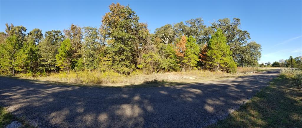 Lot 172 Zebra Crossing, Larue, TX 75770