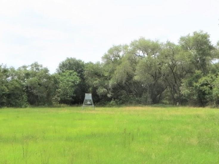 TBD County Road 19A, Hallettsville, TX 77964