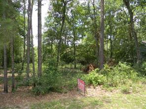 13265 Forest Acres, Houston TX 77050