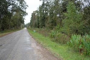 0 Crossroads, Patton Village, TX 77372