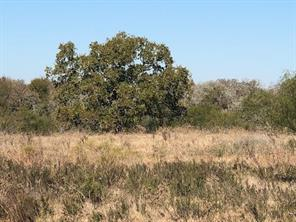 110 Old Waelder, Flatonia, TX, 78941