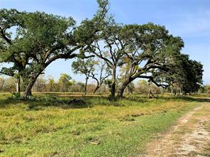 24388 County Road 332 - OFF, Sweeny, TX, 77480