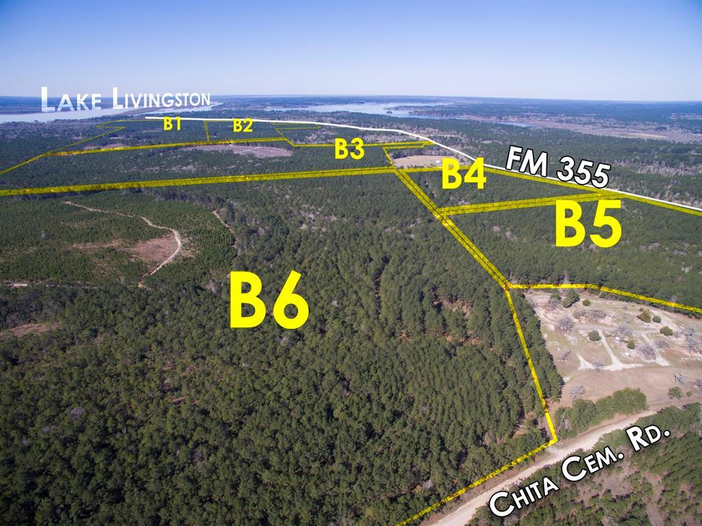 00 FM 355/Chita Cemetery Rd, Trinity, TX 75862