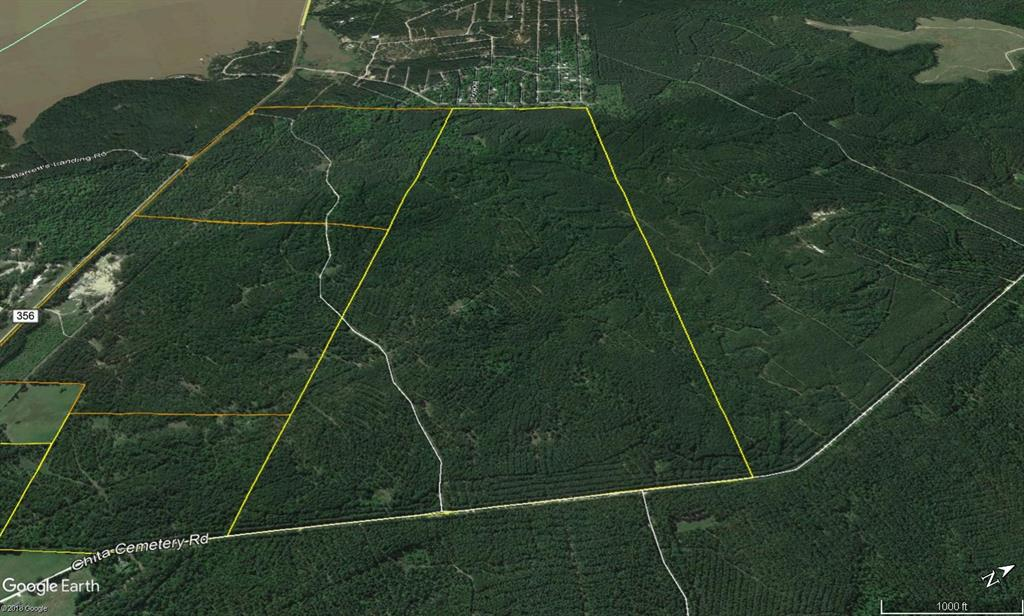First time open market offering for historically owned industry forestland. Tract has frontage on FM 355. Beautiful rolling topography with pines and hardwoods. Near Lake Livingston and public boat ramp. Division lines are arbitrary, so pick your spot! Great shape for utilization. Lake sites. Great access/frontage allows for many uses. ie; recreation, hunting, high fence, RV park, leisure ranch, development, etc…