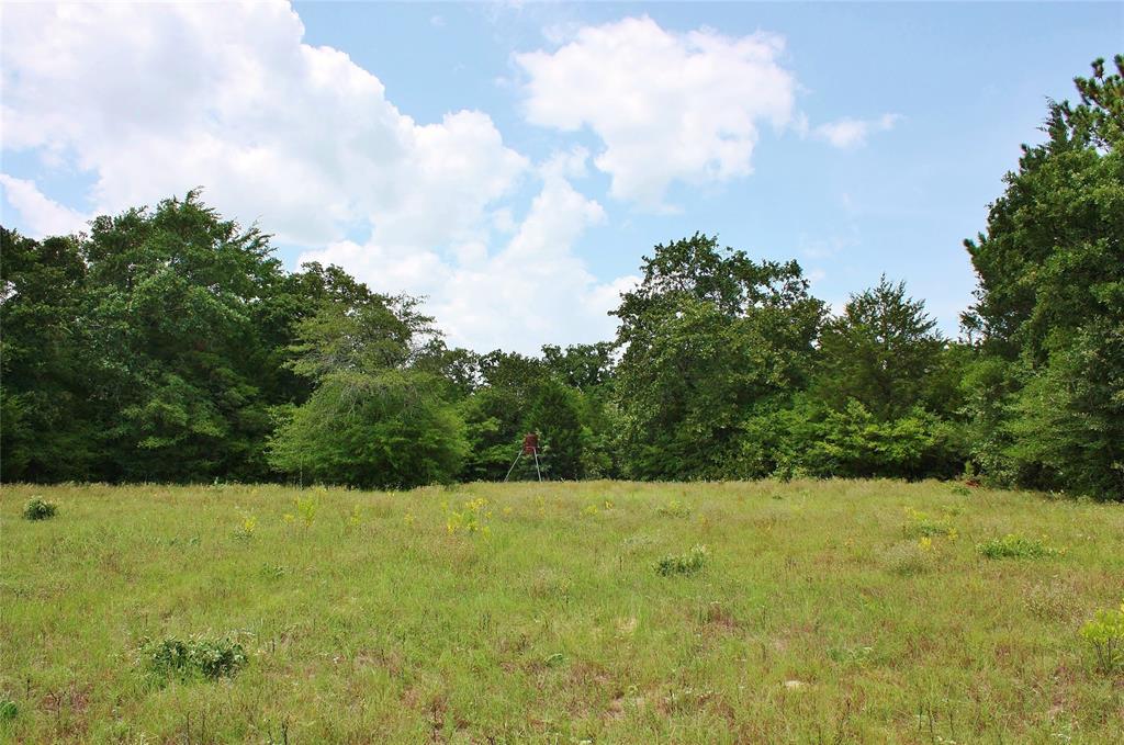 43.45 Acres County Road 493, Marquez, TX 77865