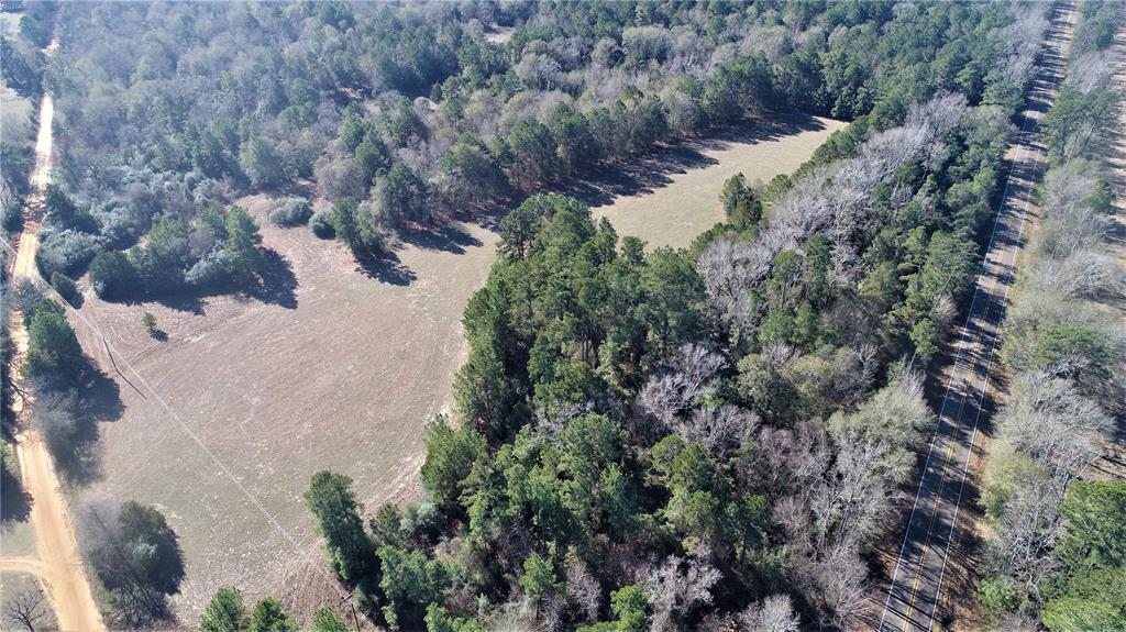 LOCATION, LOCATION, LOCATION!   If you're looking for a nice tract for recreational or full time living, come see this 80 +/- acre property! This tract is mostly wooded with pine trees and a mix of hardwoods. There is a pretty pond and approximately 10 acres is open pasture. This property has good frontage on FM 228 and CR 1865.  All utilities are available at the road.  It's conveniently located near downtown Grapeland – approximately 2 miles from SH 287. This property will need a new survey, as this property is out of a larger tract.  This would be an excellent place for that new home in the Grapeland ISD. Call us today for more details!