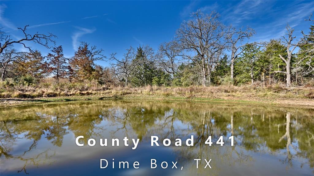 ~ Dime Box Wildlife Retreat ~Peace and quiet among 23.478 partially wooded acres.