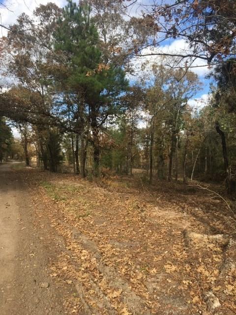 00 Raven Hill Road, Oakhurst, TX 77359