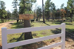 363 Furr Mays B, Smithville, TX, 78957