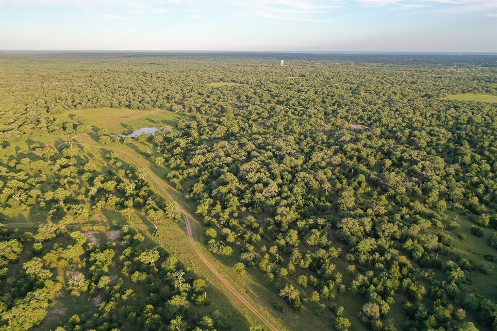 The K Bar Ranch is a 965 +/- contiguous acre spread located approximately 1.5 hours from Austin, Houston and San Antonio. It's a rare opportunity to acquire almost 1,000 acres instantly. Located 6 miles south of Hallettsville off paved FM 2616, you'll have quick access to groceries, restaurants and medical needs, while still enjoying the peace and serenity of nature. The ranch features cattle pens, a century old farm house, RV hookup, and tons of wildlife - including deer, wild hogs, turkey and bobcats. Multiple parcels form a rectangular shape so it could be an ideal hunting or exotics ranch. Electricity, water wells and septic tank are in place. Additional water is available from a couple of ponds, and the creek has running water after nice rains. It's not often that a property of this size becomes available. So here is your chance to take advantage of this large canvas, fulfill your dreams, and make it your own!