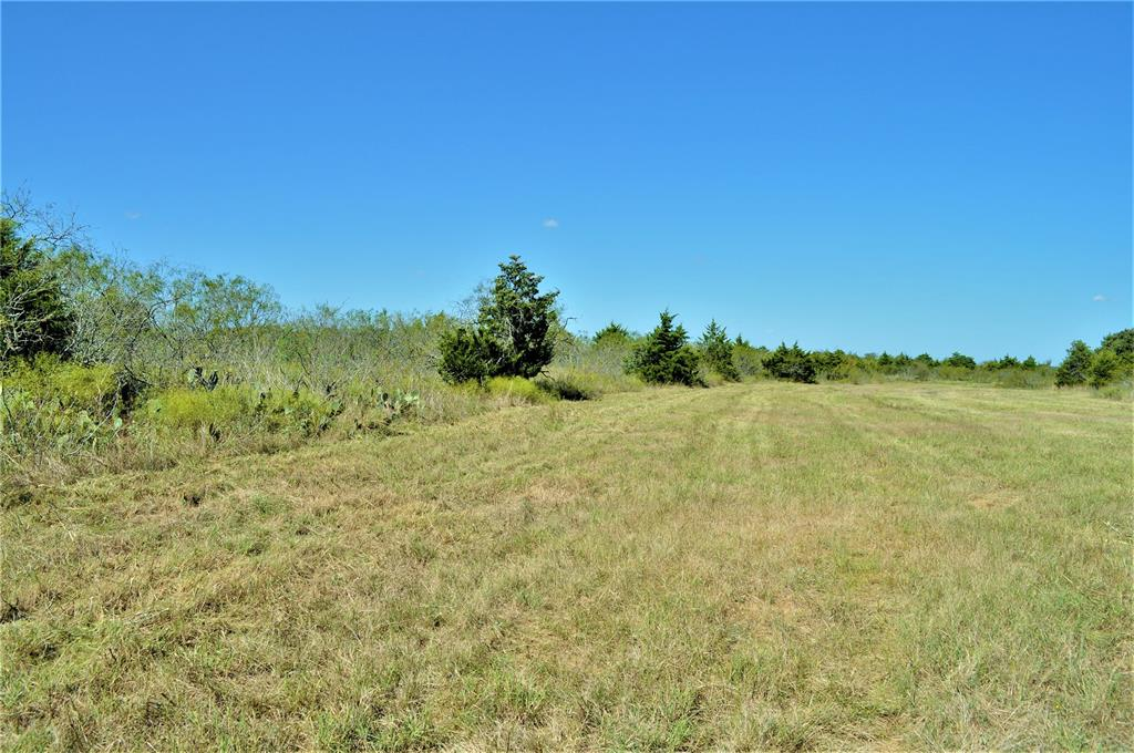 Are you looking for a small piece of the country?  Here is 11 acres with paved road frontage between Lexington and McDade.  It has access to electric however you will need to drill a water well.  There is a cute little pond that has never gone dry. The property is partially wooded with a variety of trees and lots of wildlife to see. There are new fences along the property lines. The quiet neighborhood and country setting is a great place to call home. The only restriction is NO MOBILE HOMES. The sellers are licensed realtors in the State of Texas.