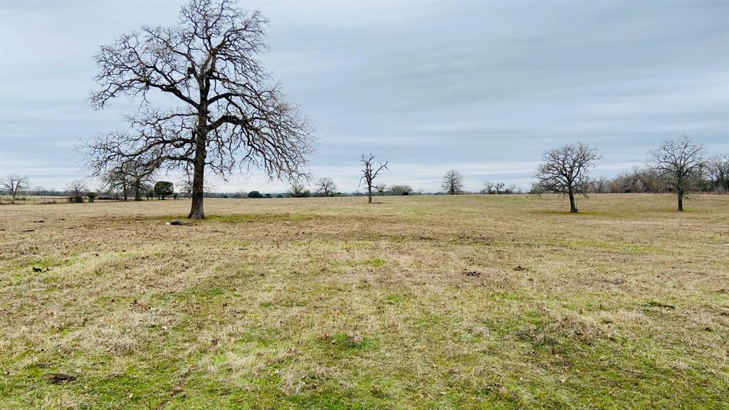23 +/- acres located conveniently between Austin and Houston just minutes from HWY 290.  The property is Ag exempt, has 2 ponds, storage barn and good fencing on 3 sides.  Several home site's to choose from that have nice views.  Electric on property and Lee County Water Supply is in the area.