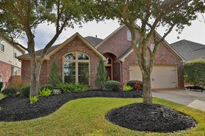 14730 Yellow Begonia, Cypress TX 77433