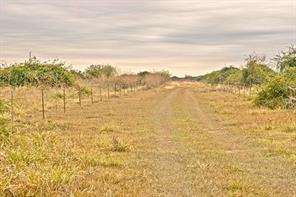 3295 CO RD 445, Other, TX, 77961