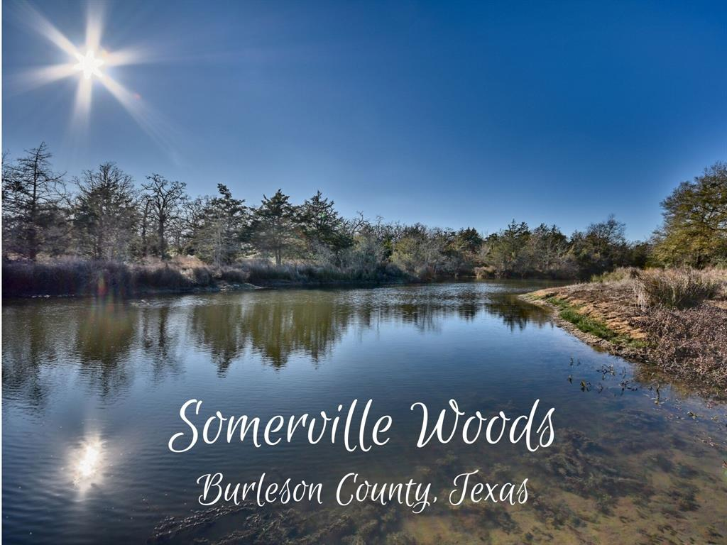 Looking for a wooded property with easy access to Lake Somerville? This unique piece of land has it all. A 2+ acre lake, another pond, mature trees, and full of wildlife. Whether you want a place to build a cabin, park your RV, or use for hunting, this property may be the perfect fit.