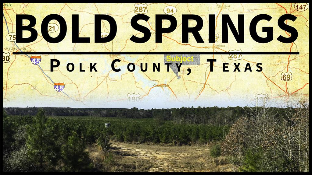 Bold Springs - High Views! Meandering Creek Borders. Rolling Hills. Excellent Access. Wooded With Per-merchantable Pine And Hardwood. Shape To Your Desire. Great Home Or Cabin Site. Great Recreational Tract.