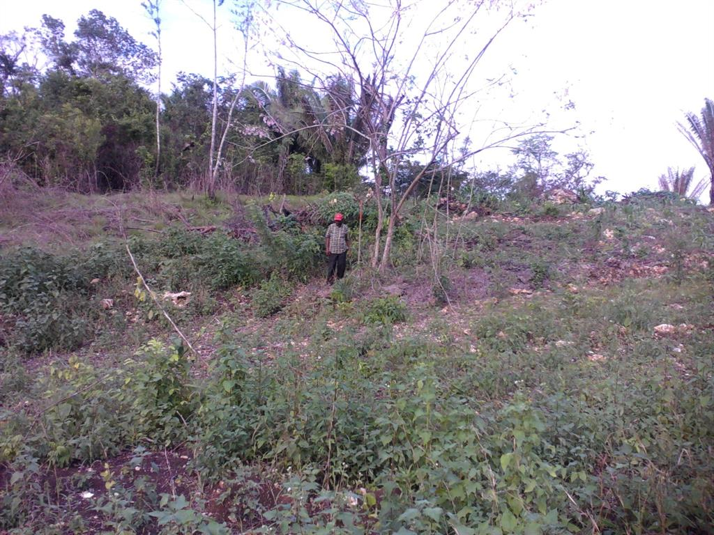 5627 Block 20/ 5627 Western Belmopan - Belize, Other, BZ 99999