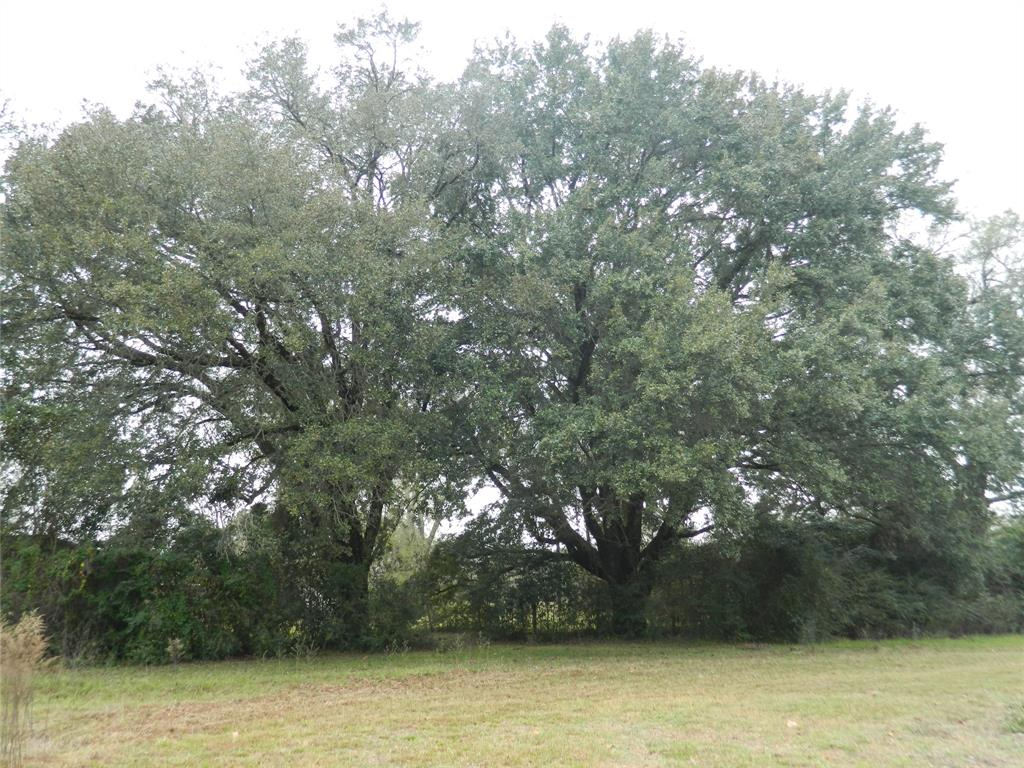 """Want to """"live in the country"""" but have all of the conveniences of the suburbs?  Then you must come take a look at this 4.6 acre tract in Tomball!  Location is everything, and this acreage is minutes from 2920, 249, and 99, but yet no road noise.  At the end of a private road off of Cedar Ln; this tract is private and secluded. The property has a 1200 SF metal building/workshop, a sizable storage shed, and a 560 SF cabin that could have multiple uses!  This would be a fantastic tract to build your new county home."""