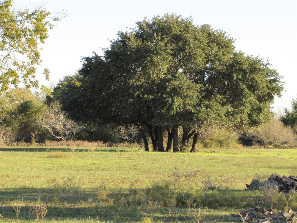 Grazing land, total acreage of 119 acres, located on Interstate 10 at CR 253 just West of Weimar. Scattered live oaks and mesquite with woods along creek area. Mix of brush/trees and open meadows. One nice pond. Old pens and barn. A portion of the ranch lies in Fayette County.