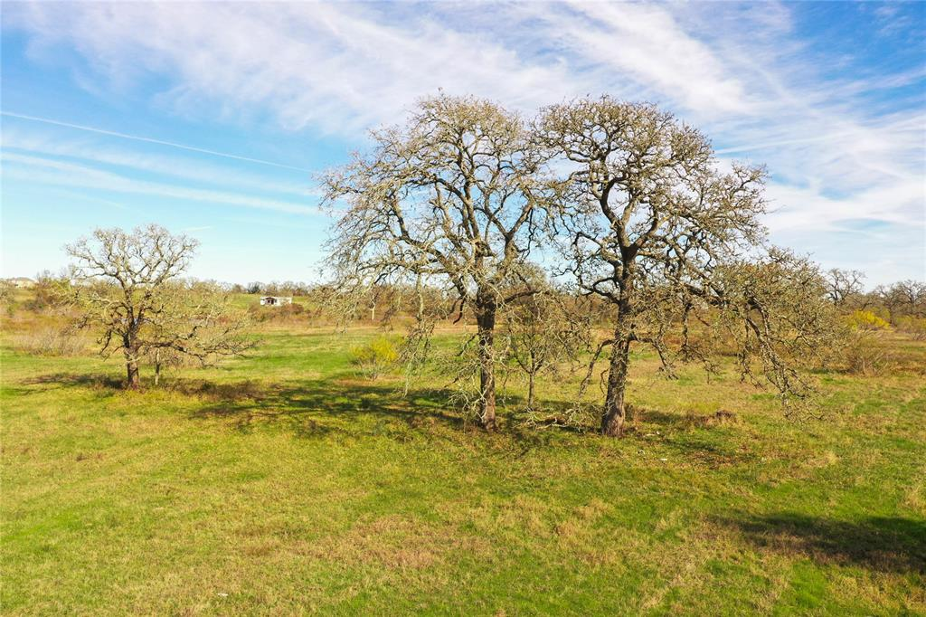Nice cleared 11 acres of property with scattered mature oak trees. Public water line available as well as electricity. Property is in close proximity to Highway 290 which makes for an easy commute to Giddings, Bastrop, Elgin, or Austin. Agriculture exemption in place.