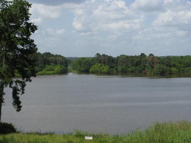 Gorgeous 15.46 Acres of waterfront property on Lake Livingston! Has water/sewer & elec. Massive Timber (Timber exempt.) Over 480' water-frontage, Access thru Westwood Shores with optional Golf course membership, swimming pools/tennis courts/Country Club/19th Hole Bar & Grill/Fitness Center, & Access to Campground.  24 Hr manned gate. Call for additional details.