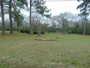 219 6th Street, Magnolia, TX, 77355