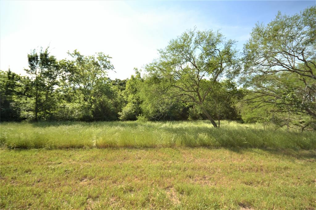 13083 Lot 21 E Old San Antonio Road, Hearne, TX 77859