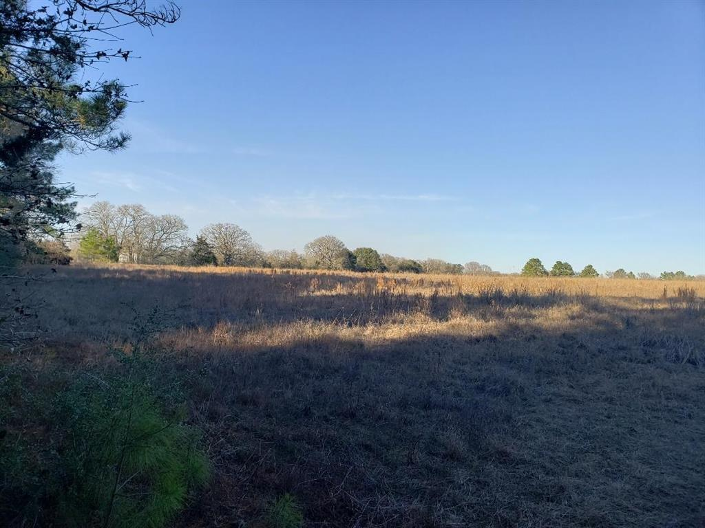 Plenty of hay for your cattle operation, 2 large ponds off Hwy 19 in Lovelady Texas. Pasture with some large pines and oak trees. Beautiful build site for that country living. Great weekend place for hunters plenty of wildlife. Here is your chance to own a piece of Texas. In the highly sought after Lovelady ISD. Close to Houston great for weekends and recreation.