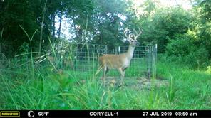 131 FCR 302, Oakwood, TX 75855