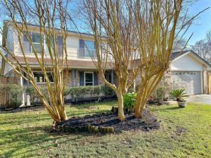 13706 New Village Lane, Sugar Land, TX 77498