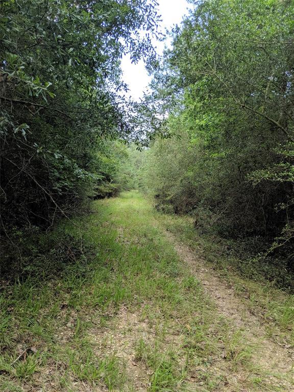 000 Whispering Pines Drive, Lumberton, TX 77657