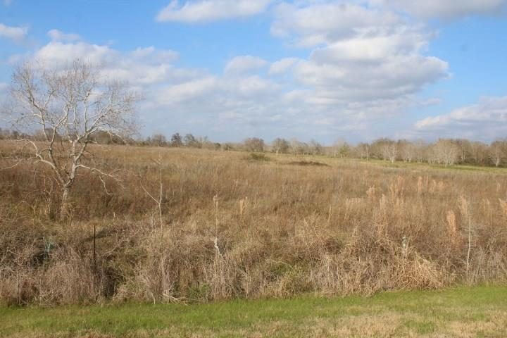 Great homesite with plenty of room for your horses or cattle.  Level, open pastureland terrain.  No pipeline, drainage, or transmission line easements cross the property.  The Surface Only is being offered - no minerals.