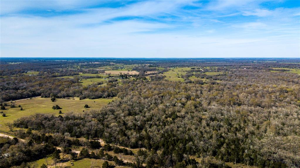 Ready to build your new home? Want to experience the peace and quiet of country living, or maybe just have your own little slice of heaven? Only an hour from Houston and offering approx 1,500ft of FM 3091 road frontage, this 91.7-acre tract is ready for a multitude of opportunities! Beautiful scattered trees cascade along the property line and provides the privacy you've been looking for. Within the property you'll find  a half open, half wooded terrain fit and ready with multiple homesite opportunities including a pond on the West end. This property offers acres of diverse wildlife traffic and access to seasonal creek. Don't miss out, call today! Additional acreage available.