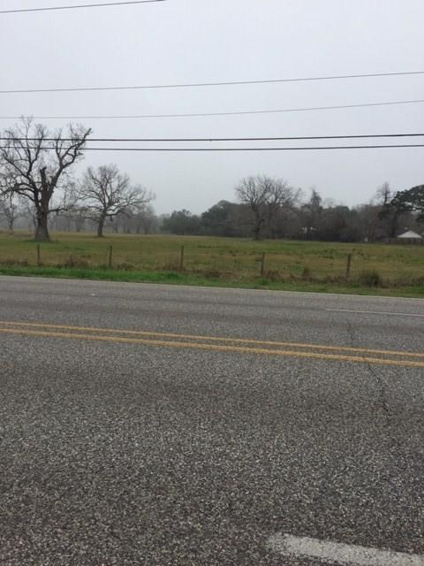 This is an absolutely beautiful property - 15.946 Acres with pecan and oak trees - Zoned Commercial.  Mowed so it can be viewed from front to back.  The front of the property has approximately 300 feet of highway frontage.  The back of the property is on Live Oak Street.  The parameter of this land is fenced.  Call for an appointment!