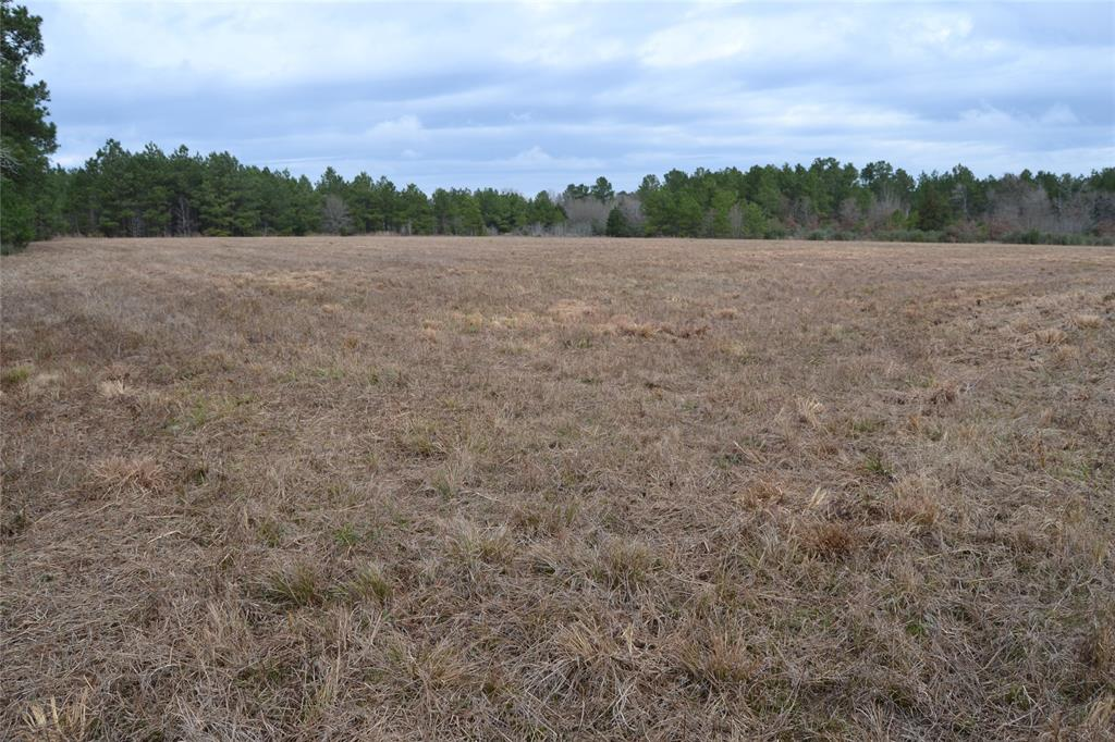 LOCATION, LOCATION, LOCATION!   This 14.3-acre property sits in an excellent location on Highway 19 South, between Crockett and Lovelady, with great access! It backs up to a large timber tract with game trails all over the wooded area of this property. There is also a secluded pond. This would be the perfect spot to build your dream home! It is in the Lovelady ISD with electricity in place and water available at the road. Call us today to see this great property, it won't last long!