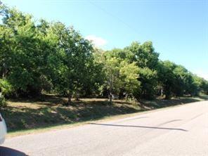 LOT 1 Duncan Drive, Oyster Creek, TX 77541