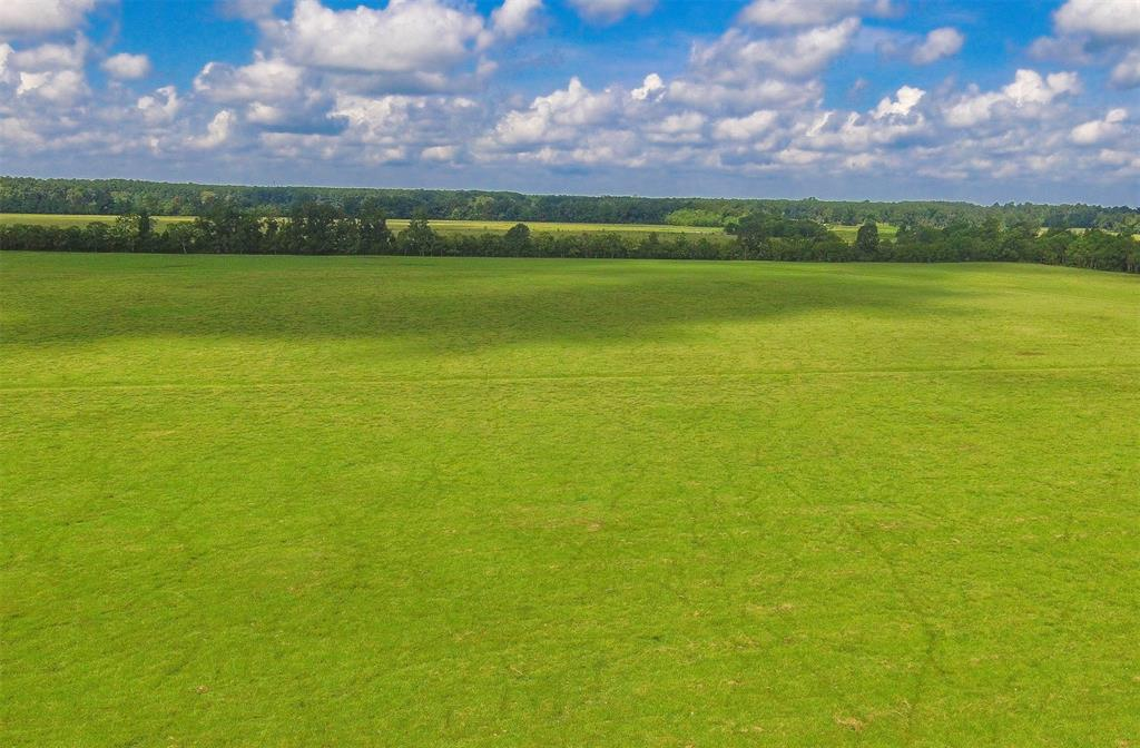 Located just minutes from HWY 321 between Cleveland and Dayton, this 11 acre tract is in a rural yet convenient area perfect for those wanting to have a little peace and quiet as well as an easy commute to work or shopping centers. The cleared tract features light deed restrictions and is ready to be fenced and cross fenced for your mini ranch setup! Adjoining acreage available!
