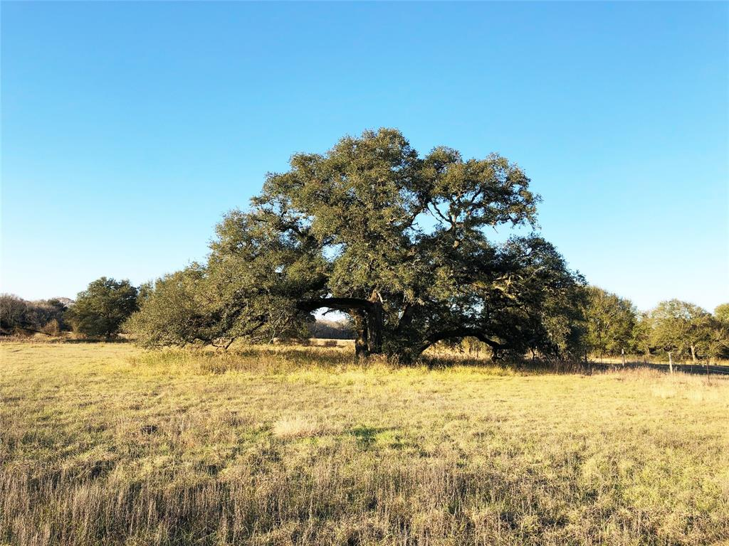 2.5 acre country property, located within 12 miles of State Highway 71. Mature oak trees on property with fenced yard. This property includes electricity, septic system, water well, pump house, butane tank, out buildings/covered storage, garage/shop, and mobile home.  According to FEMA flood map dated 4/5/2006, property is located in Zone A.
