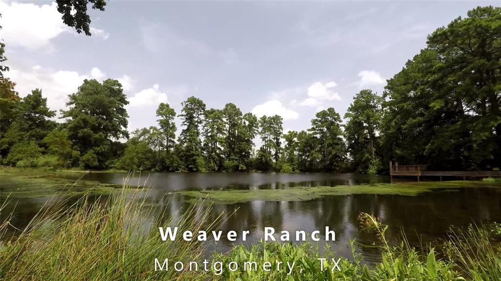 17 Rolling Acres with a pond, open pasture , some trees ,Great for horses or cows,  nice home site.  Come build your dream home and enjoy the country.  Montgomery ISD just minutes from historic Montgomery TX.
