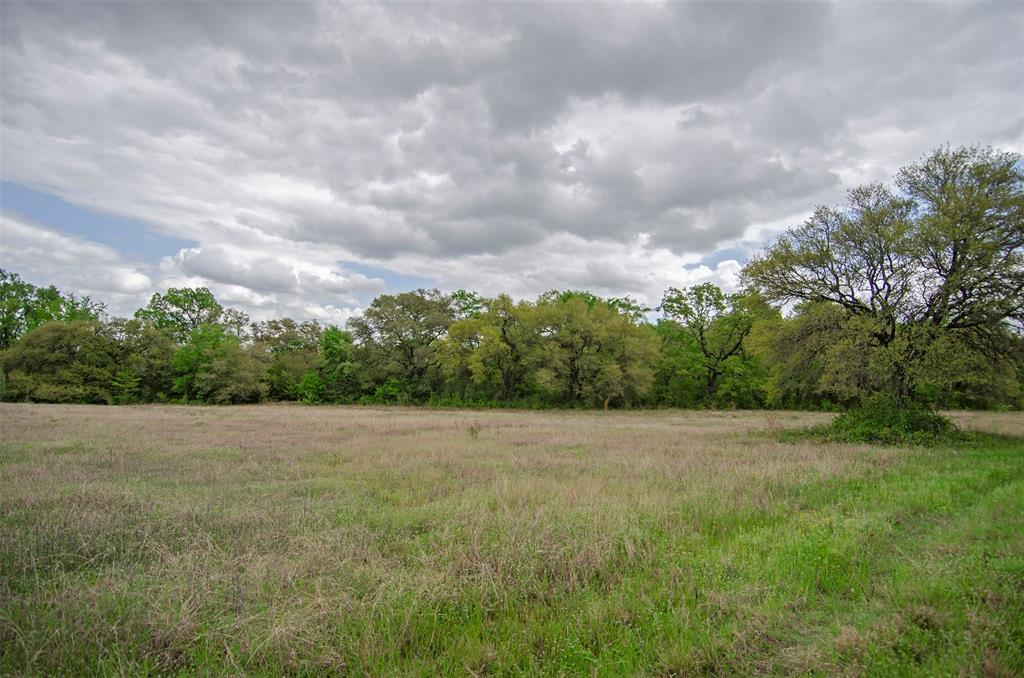 Beautiful property offering mature trees with view and wooded areas, great home site and light restrictions. Paved county maintained road frontage, conveniently located just 34 miles to College Station and only 7.5 miles to Washington-on-the-Brazos. Abundant wildlife, ag-exemption in place and electric on property. Can be purchased with more or less acreage if desired!