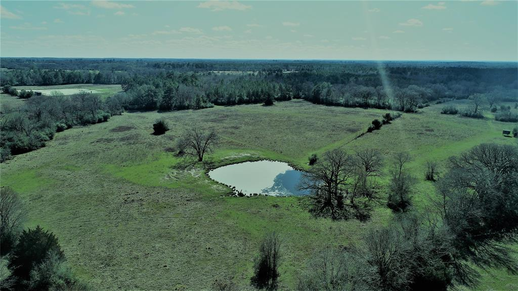 SECLUDED GET-AWAY!   If you're looking for that perfect 50-acre tract for a weekend getaway, cattle place, or to build that new home, this is it! This property is within 10-minutes of the great town of Lovelady – convenience of town amenities with peaceful, country living. This property is fenced, has a nice pond, and a creek running through part of the property. It is mostly open, making it idea for cattle or horses. Water and electricity are available at the road. Call us today to see what this tract has to offer you!