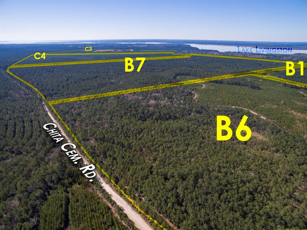 """First time open market offering for historically owned industry forestland. Tracts have frontage on Chita Cemetery Rd. Beautiful rolling topography with pines and hardwoods. Near Lake Livingston and public boat ramp. Division lines are arbitrary, so pick your spot! Great shape for utilization. Lake sites. Great access/frontage allows for many uses. ie; recreation, hunting, high fence, RV park, leisure ranch, development, etc… The subject property is subject to a timber thinning, on ~ 200 acres, per the illustrative plat under """"Attachments."""""""