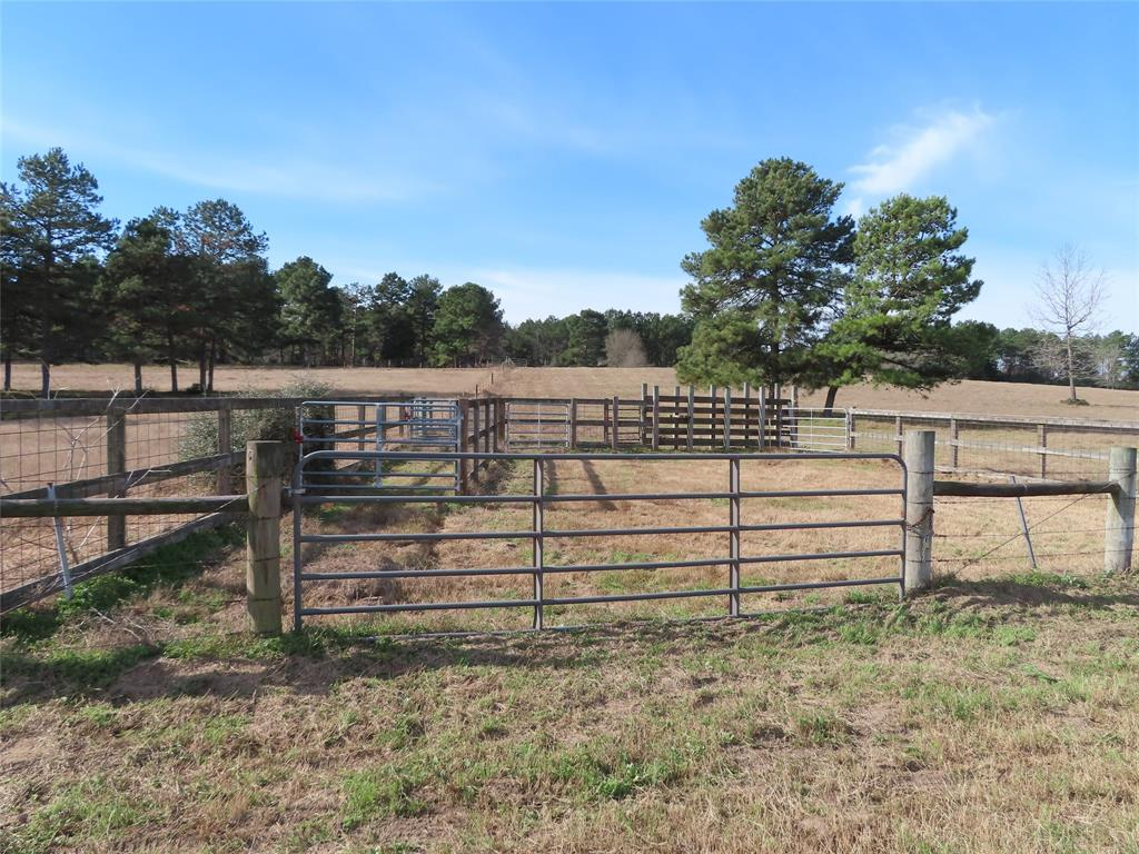 Ready for a home! high rolling hills, scattered trees, fenced /crossed fenced/yard fence, 8' fence across the back, cattle working pens, two loafing sheds, Coastal hay pastures.