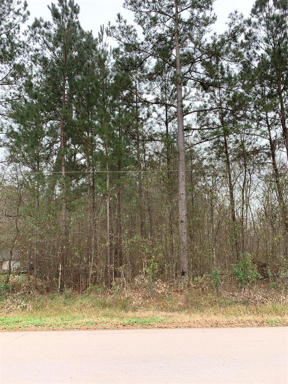 1 Acre is sought after Splendora ISD.  Quiet subdivision within minutes of Highway 59 and 99.
