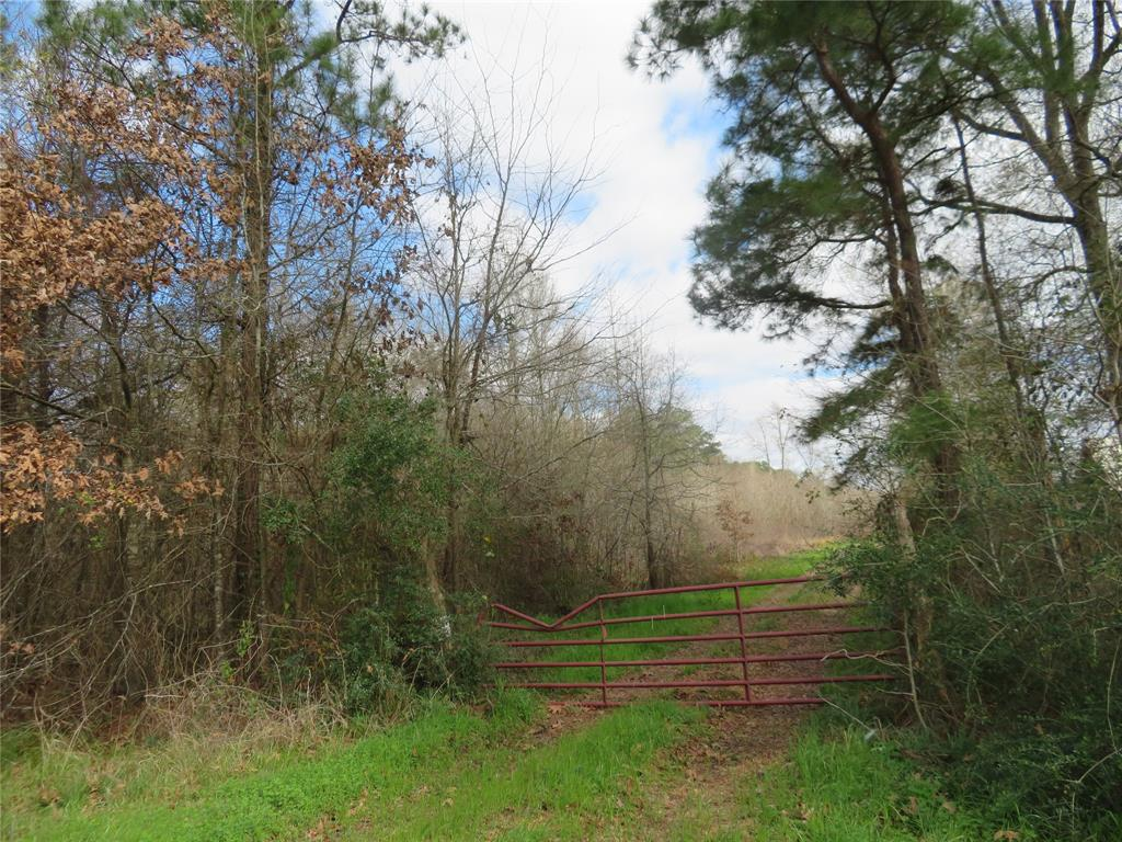 PRIVATE AND SECLUDED PROPERTY WITH ALL KINDS OF POSSIBILITIES. LOTS OF WILDLIFE FOR HUNTING, COME GROW A GARDEN, RECREATIONAL OR COME BUILD OR INSTALL YOUR DREAM HOME. THIS PROPERTY IS AG EXEMPT.