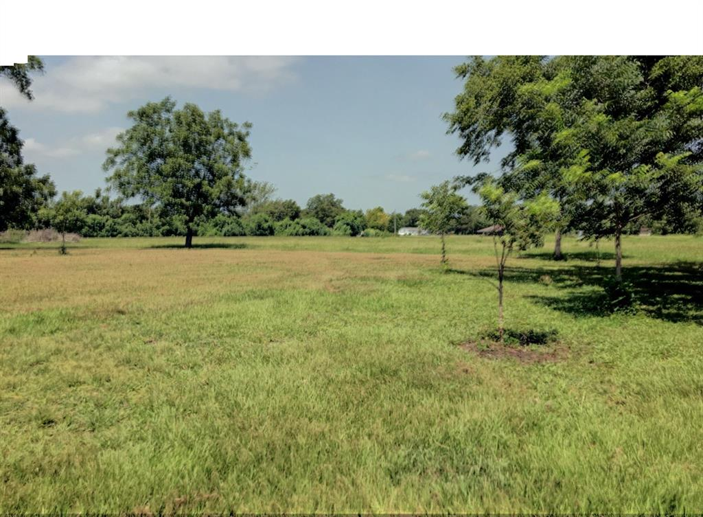 Build your home on this beautiful unresctricted 10.9 acre track tucked away from the hustle and bustle of the city yet only a 20 minute drive to Hwy 288. The property is cleared, fenced and has a partial road bed into the property. Several pecan trees are scattered throughout and provide for a perfect shaded homesite. Dance bayou runs through the property along the back boundary and attracts several species of wildlife including deer and an occasional duck. The bayou is a seasonal waterway and rainfall controls the fluctuating water level. There is a 500 gallon septic holding tank on the property but the seller makes no warranties to the condition or age of the septic. Don't let this one get away! Call today to schedule a showing. HIGH AND DRY DURING HARVEY!!